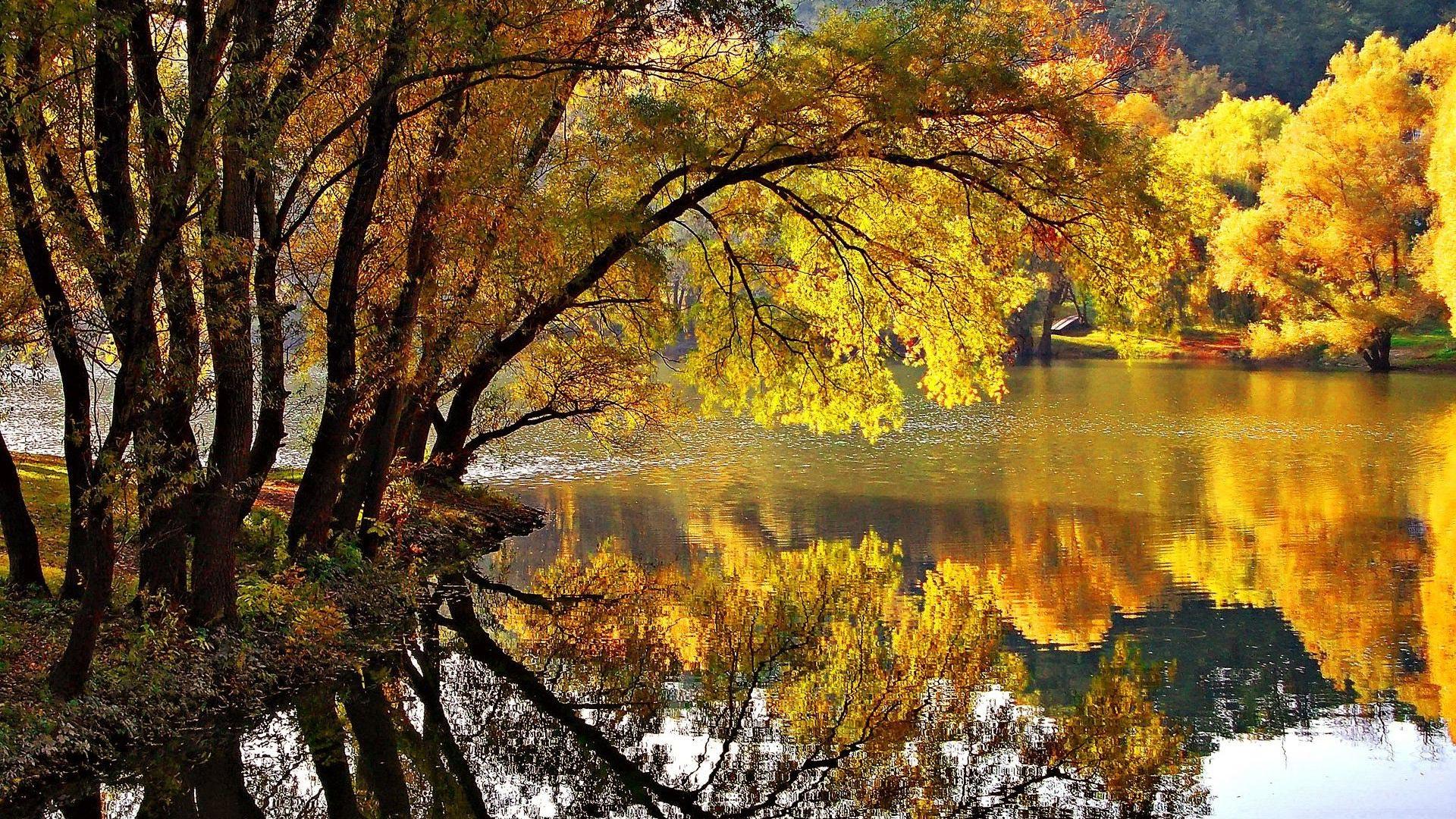 Отражение в воде картинки осень